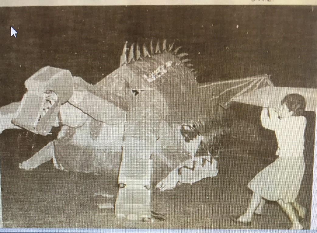 dragon - clasico ute